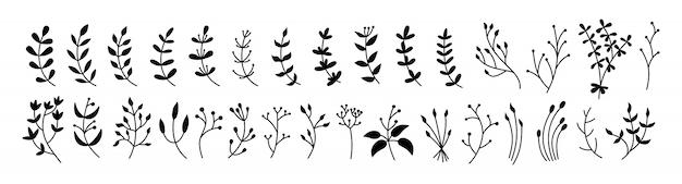 Набор цветов, веток и листьев, ботанический черный глиф. элементы абстрактного силуэта различные красивые флористические. эко коллекция плоских цветочных мультфильмов. гравюры изолированных цветов