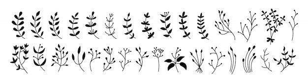 Flower, branch and leaf set, botanical black glyph. abstract silhouette different beautiful floral design elements. flat floral cartoon eco collection. engravings isolated flowers
