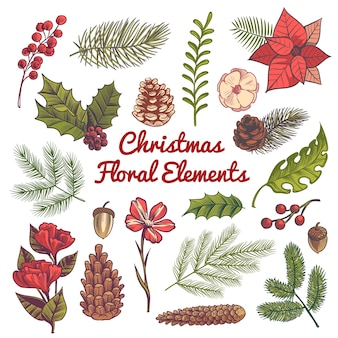 Flower christmas decorations, watercolor elements with branches of vintage traditional plants and berries