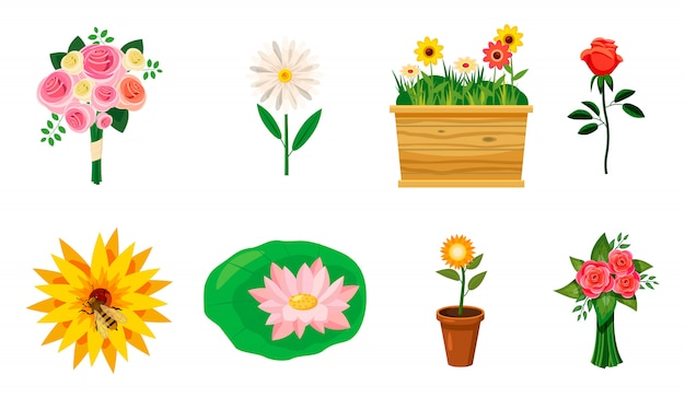 Flower elements set. cartoon set of flower