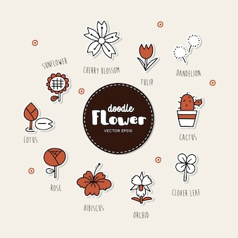 Flower hand drawn doodle icons set. type of flower.