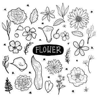 꽃 손으로 그린 낙서 삽화