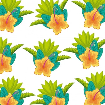 Flower hibiscus exotic leaves tropical background