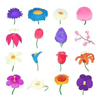 Flower icons set in cartoon style isolated vector