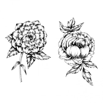 Flower and leaf in vintage style