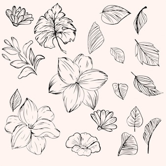 Flower and leave in ink style