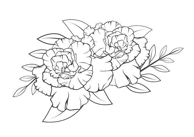 Flower leaves blossom drawing line art  isolated on white backgrounds