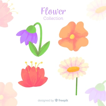 Flower and leaves collection