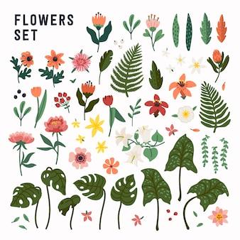 フラワーセット。野生と庭に咲く花、装飾的な花のデザイン要素のコレクション。