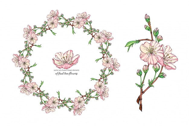 Flower set with delicate flowers, blooming branch