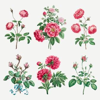 ジョン・エドワーズのアートワークからリミックスされた花のベクトルのビンテージアートプリントセット