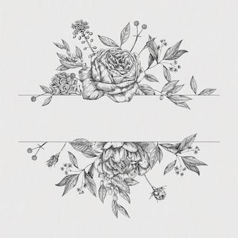 Flower vintage border. vector roses botanical drawing.