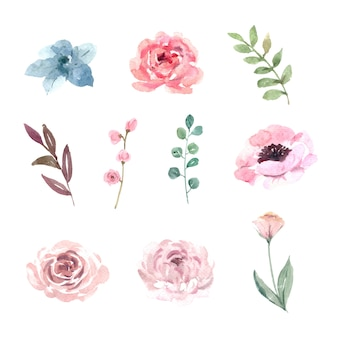 Flower wedding element design watercolor