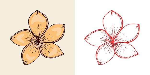 꽃 식물 열대 또는 이국적인 잎과 잎 스트렐리치아 히비스커스 플루메리아 빈티지 펀