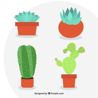 Вазоны с кактусом в плоском дизайне