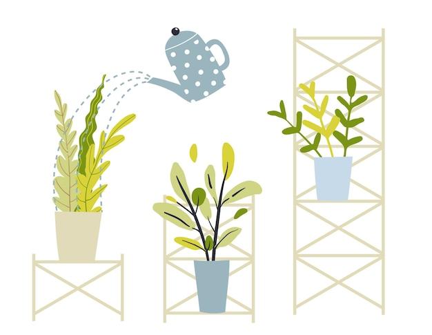 植物の植木鉢