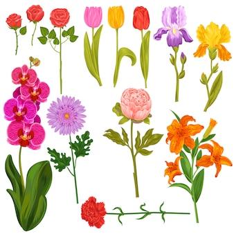 花と花のベクトル水彩花のグリーティングカードの結婚式の誕生日の招待状