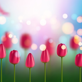 Фон цветы с тюльпанами