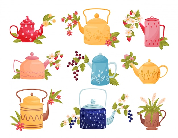 Flowers in colored teapots on white background.