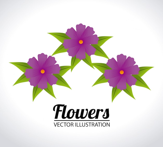 Flowers design illustration