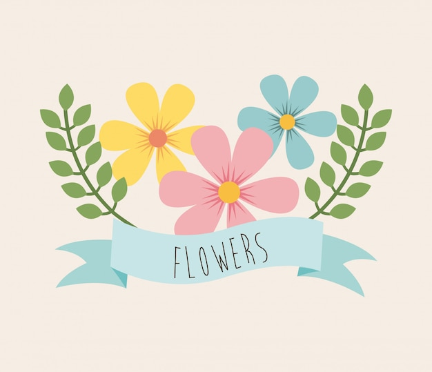 Flowers design over pink background vector illustration
