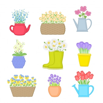 Flowers in different pots. set of spring flowers.