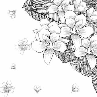 白い背景の上のラインアートで描く花