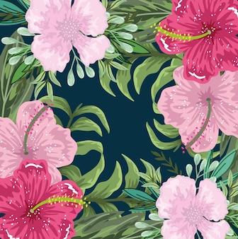 花エキゾチックなハイビスカスと葉の装飾の背景、イラスト絵画