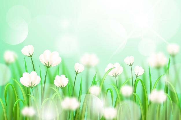 Fiori su uno sfondo di primavera sfocato realistico di campo