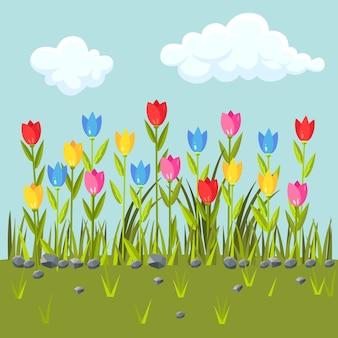 カラフルなチューリップの花畑。緑の草の境界線。青い空と雲と春のシーン