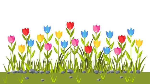 カラフルなチューリップの花畑。緑の草の境界線。春のシーン