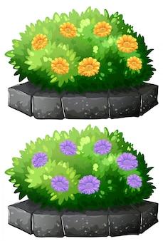 Цветы в кустах