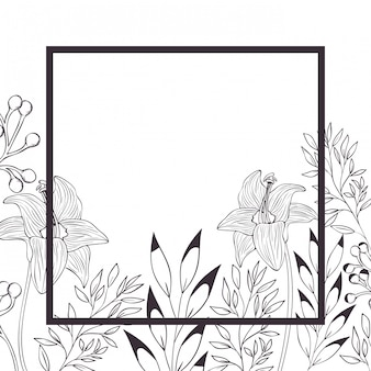 Flowers and leafs with frame isolated icon