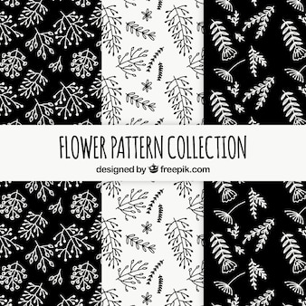 Flowers patterns collection in black and white