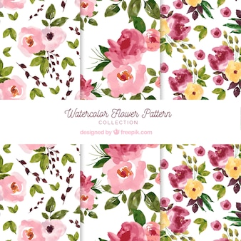 Flowers patterns collection in watercolor style