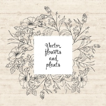 Flowers and plants design