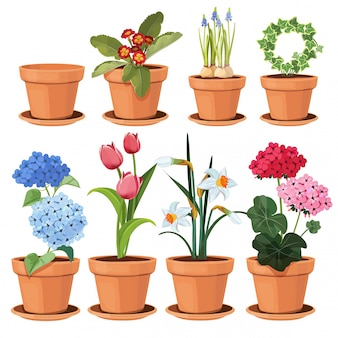 Flowers pot. decorative colored plants grow at home in funny pots cartoon illustrations set isolated