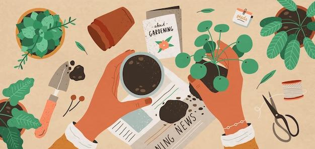 평면 평면도 그림을 재배하는 꽃. 관엽 식물 보육 및 관리. 실내 다육, 필라 재배