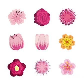 꽃 라운드 아이콘