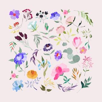꽃을 설정합니다. 우아한 여성 유칼립투스, 야생 보라색 모란, 보라색 지점, 열매와 가지. 웹, 앱, 패턴 및 로고를위한 다양한 정원 식물원. 현대 일러스트입니다.
