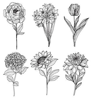 Набор цветов ручной эскиз рисунок черный и белый