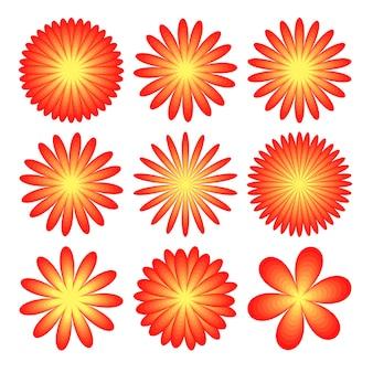 花は白い背景の現実的なアスター、菊、牡丹に設定します。