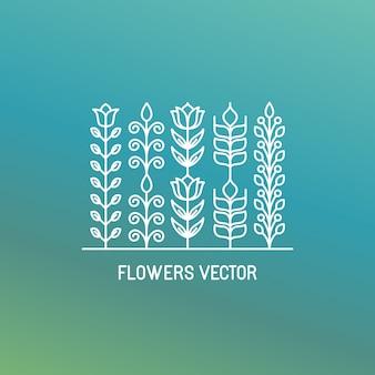 Flowers vector, lineart