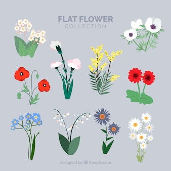 Flowers with stem collection in flat style
