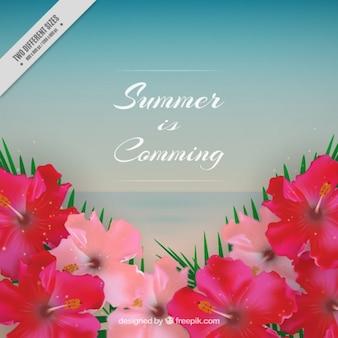 Flowery summer background