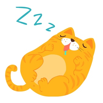 Fluffy sleeping sweet dream  cat vector