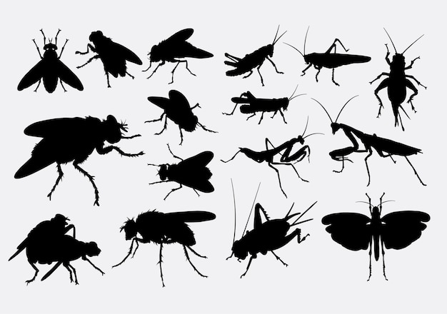 Fly cricket and grasshopper silhouette
