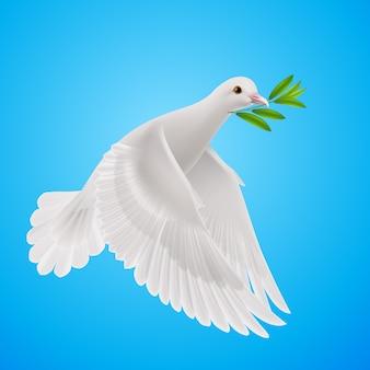 Fly dove