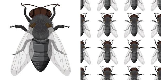 ハエ昆虫とシームレスな背景