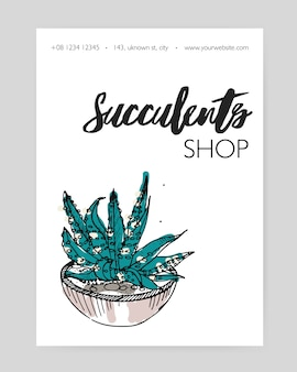 Flyer template with hand drawn desert plant growing in pot and place for text on white background.